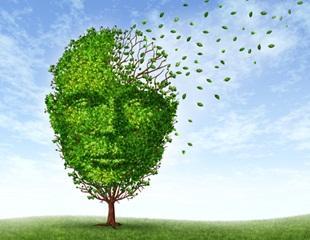 Aging & Working Memory