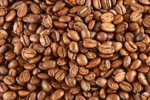 Coffee Beans and Skin Cancer