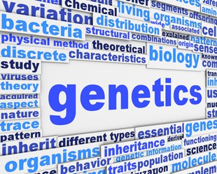 Your DNA and Your Osteoporosis Risk