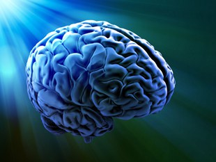Increase Your Exercise to Increase Your Brain Power