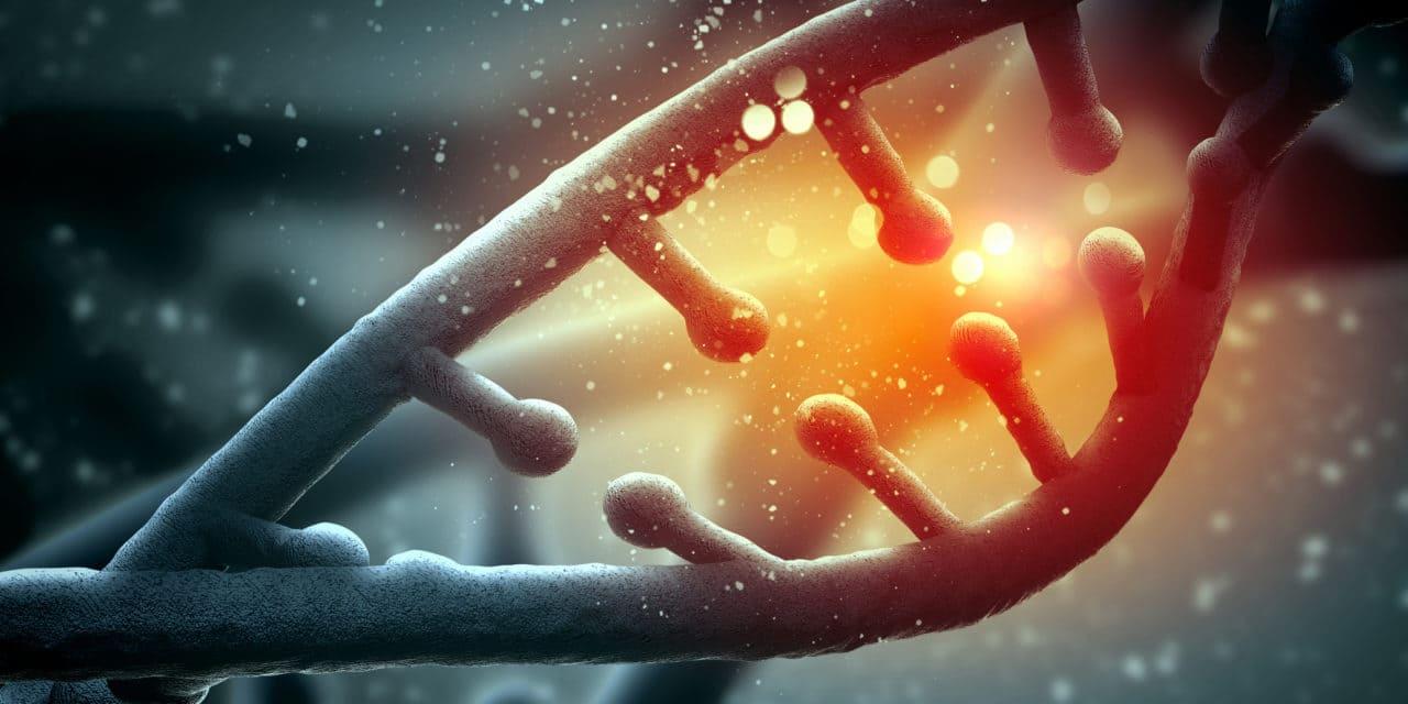 MTHFR protein, genetics and homocysteine levels