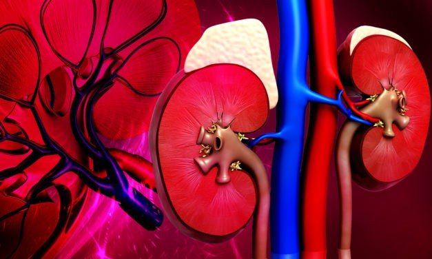 What is a glomerular filtration rate test?