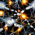 Cause of Alzheimer's disease