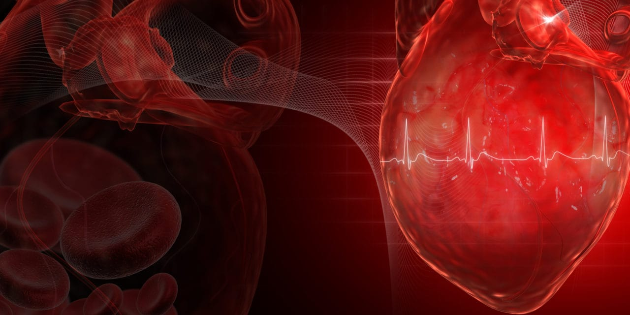 What is pulse wave velocity?